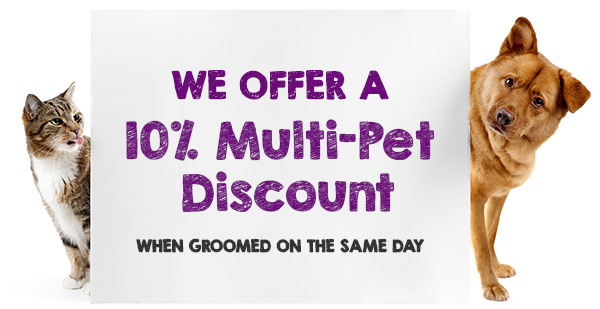 Multiple Pet Discount - Mobile Grooming