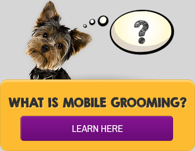 Mobile grooming shop grooming purrfurred pet styling what is mobile pet grooming solutioingenieria Choice Image