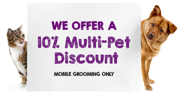 Mobile grooming purrfurred pet styling do you have multiple pets multiple pet discount mobile grooming solutioingenieria Image collections